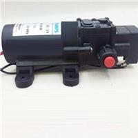 Bơm Nước Mini 12V 80W